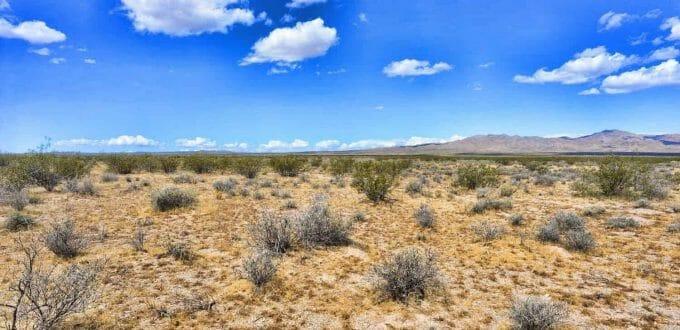 Eldon Road, Dolan Springs, AZ 86441