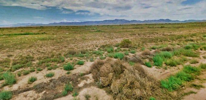 Grossman Road, Kingman, AZ 86409