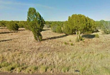 8549 Elkhorn Drive, Show Low, AZ 85901